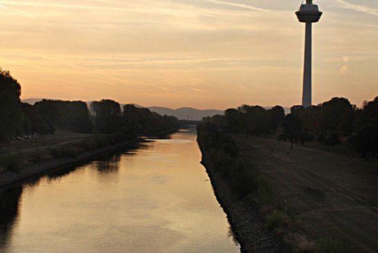 Mannheim-Funkurm (3)