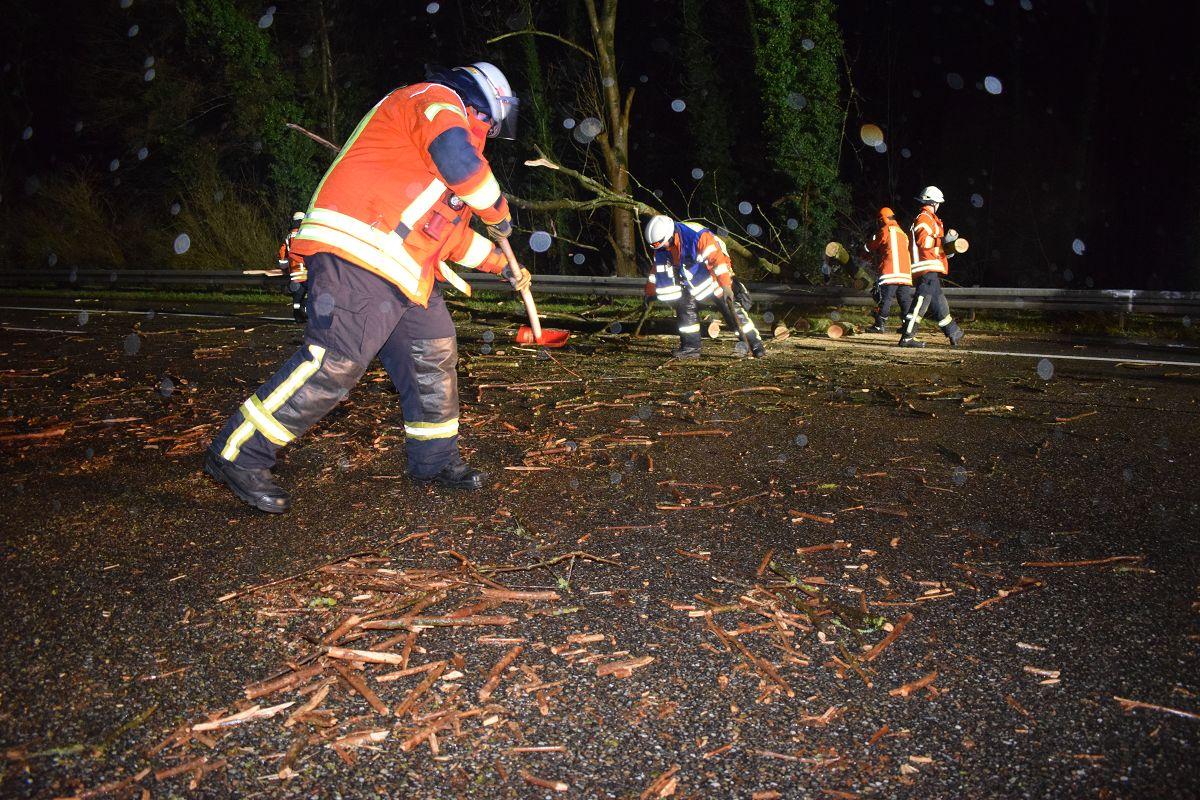 A6/Sinsheim: Baum blockiert Autobahn - Auto kann nicht mehr bremsen