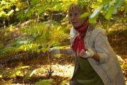 Letzter Wildkräuterspaziergang in Weinheim für dieses Jahr am 17. Oktober