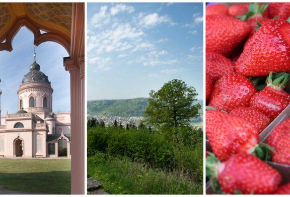 Pfingstferien in der Region: Kultur, Natur und Kulinarik – Den Rhein-Neckar-Kreis neu entdecken