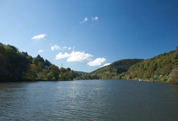 Gesundheitsamt rät vom Baden im Neckar ab