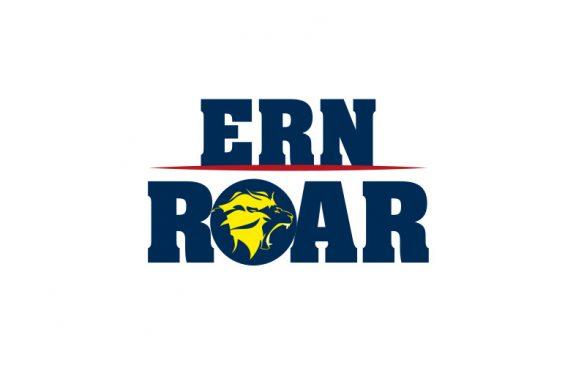 Mannheim: Rhein-Neckar Löwen gründen eSport-Team
