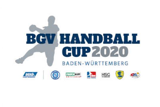 Rhein-Neckar-Löwen: Baden-Württembergs Proficlubs mit eigenem Vorbereitungsturnier