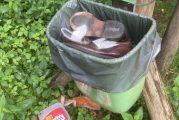 Müll und Vandalismus: Stadt appelliert an Waldbesucher in Heidelberg