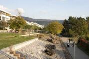 Ausgleichsflächen in der Bahnstadt: Neue Radwege für alle und Zuhause für Eidechsen