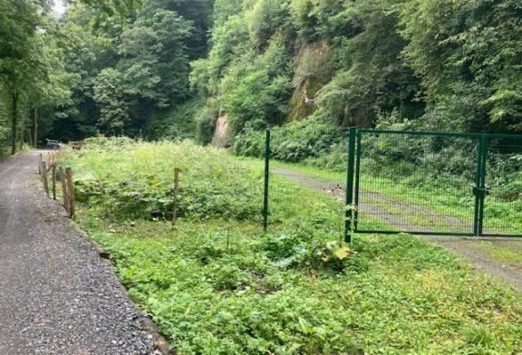 Gewinn für Mensch und Natur: Wanderweg am Steinbruch Heidelberg Gumpental verlegt